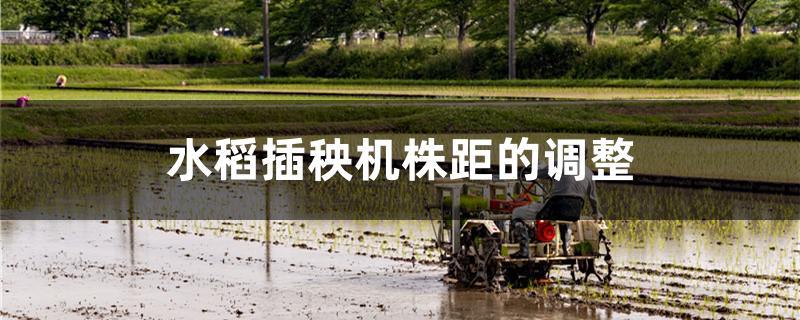 水稻插秧机株距的调整方法