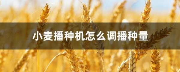小麦播种机怎么调播种量