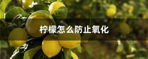 柠檬怎么防止氧化