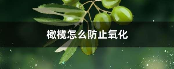 橄榄怎么防止氧化