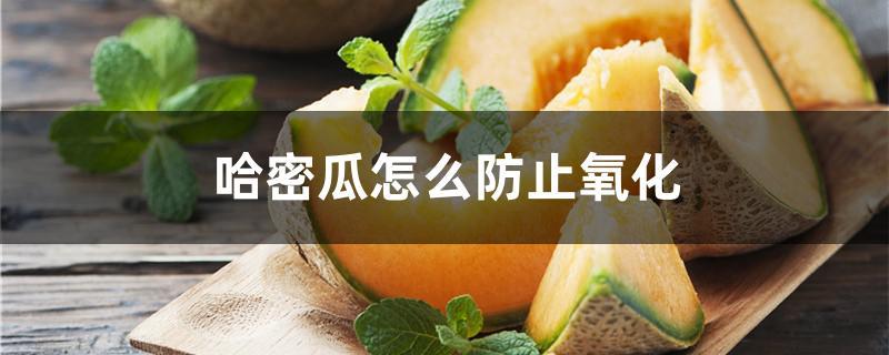 哈密瓜怎么防止氧化